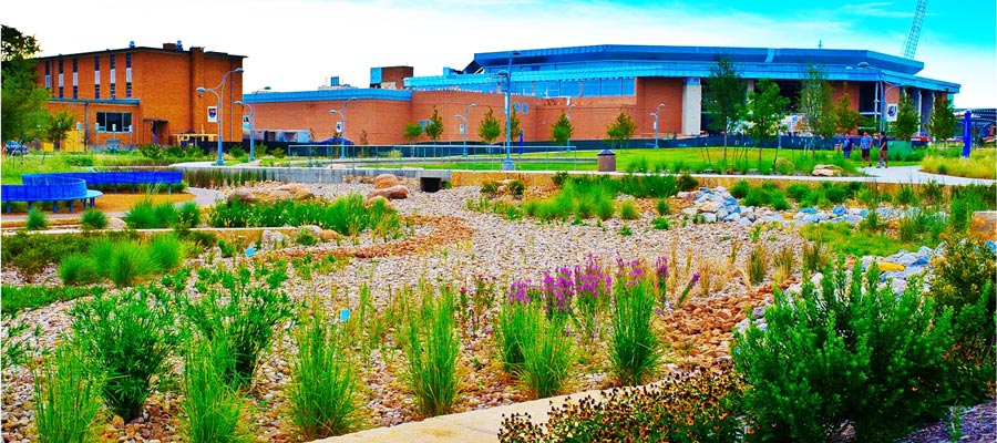 Commercial Low Water Landscaping